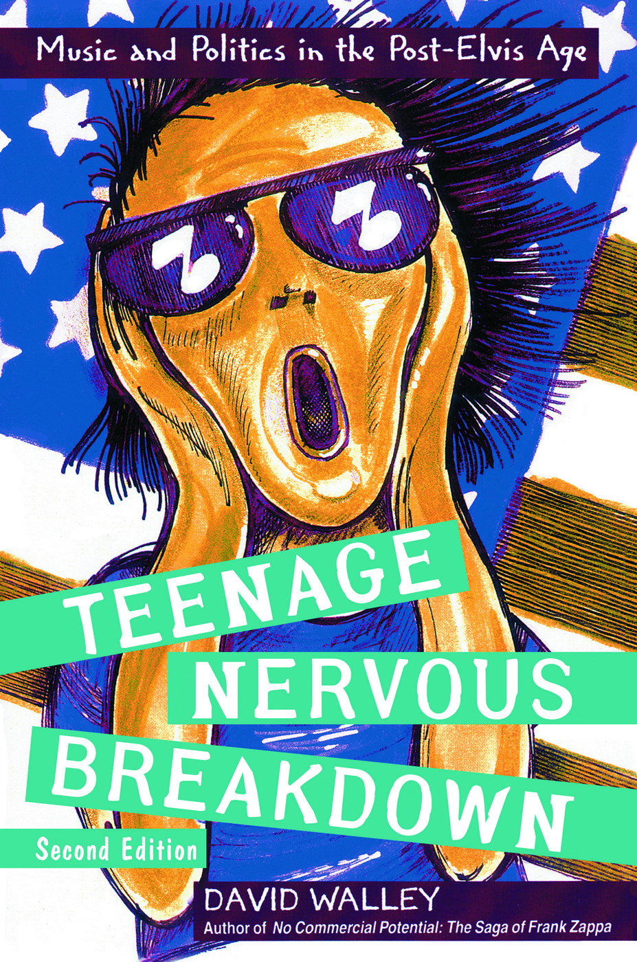 Teenage Nervous Breakdown (Paperback) book cover