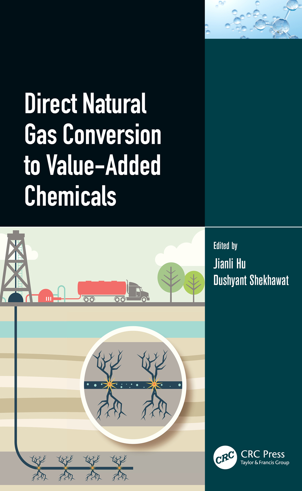 Biological Conversion of Natural Gas