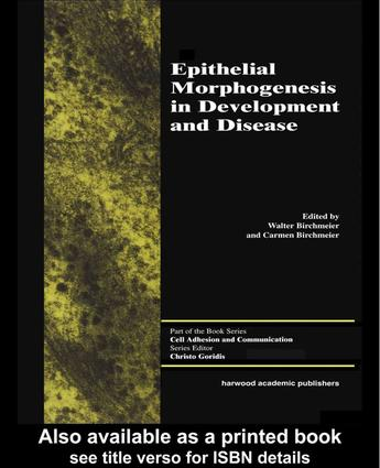 Epithelial Morphogenesis in Development and Disease: 1st Edition (Hardback) book cover