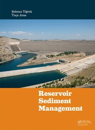 Theoretical aspects of sediment transport
