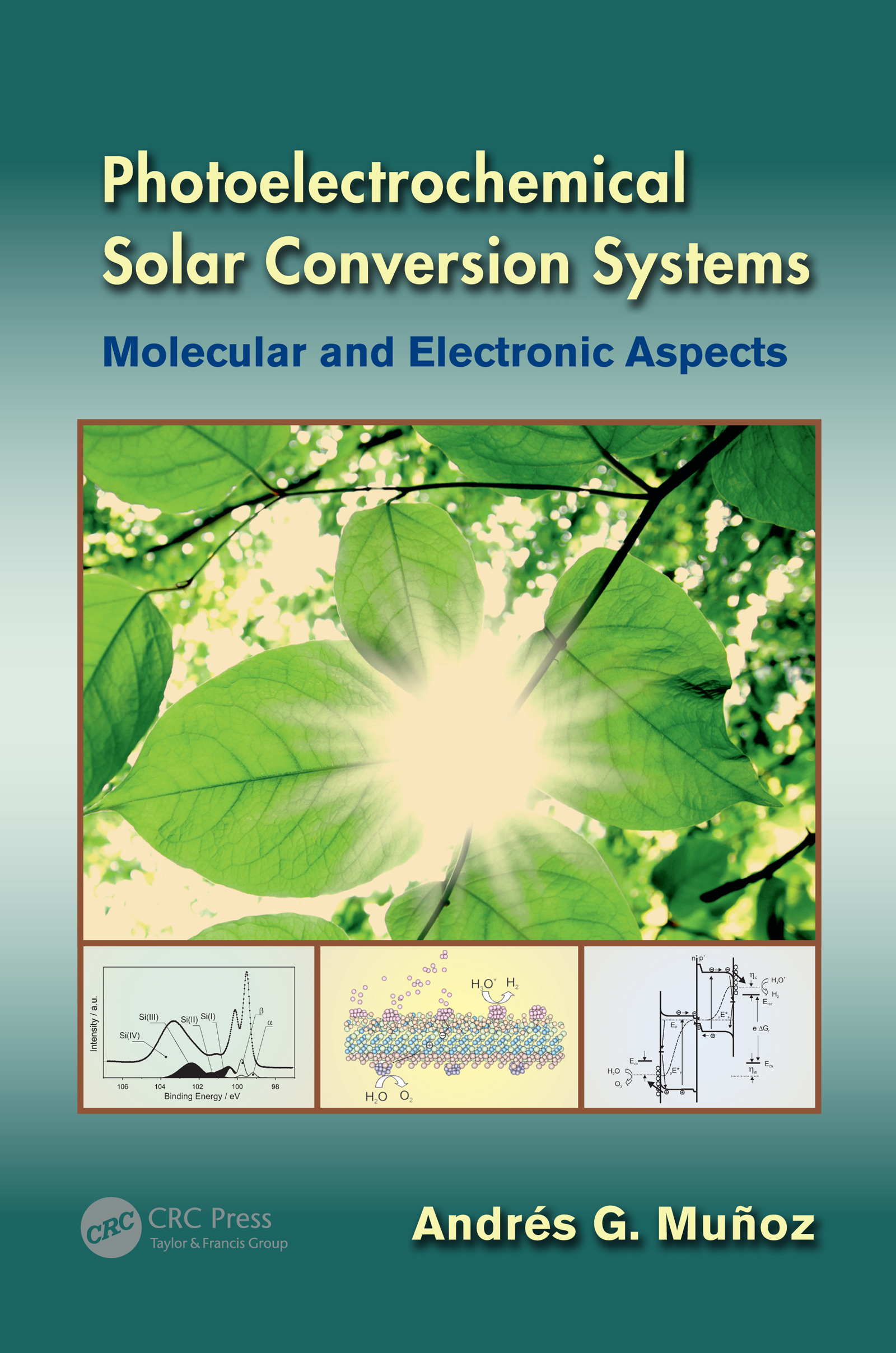 - Principles and Systems in Light-Induced Energy Conversion