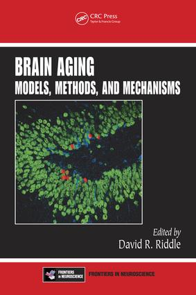 Imaging Cognition in the Aging Human Brain
