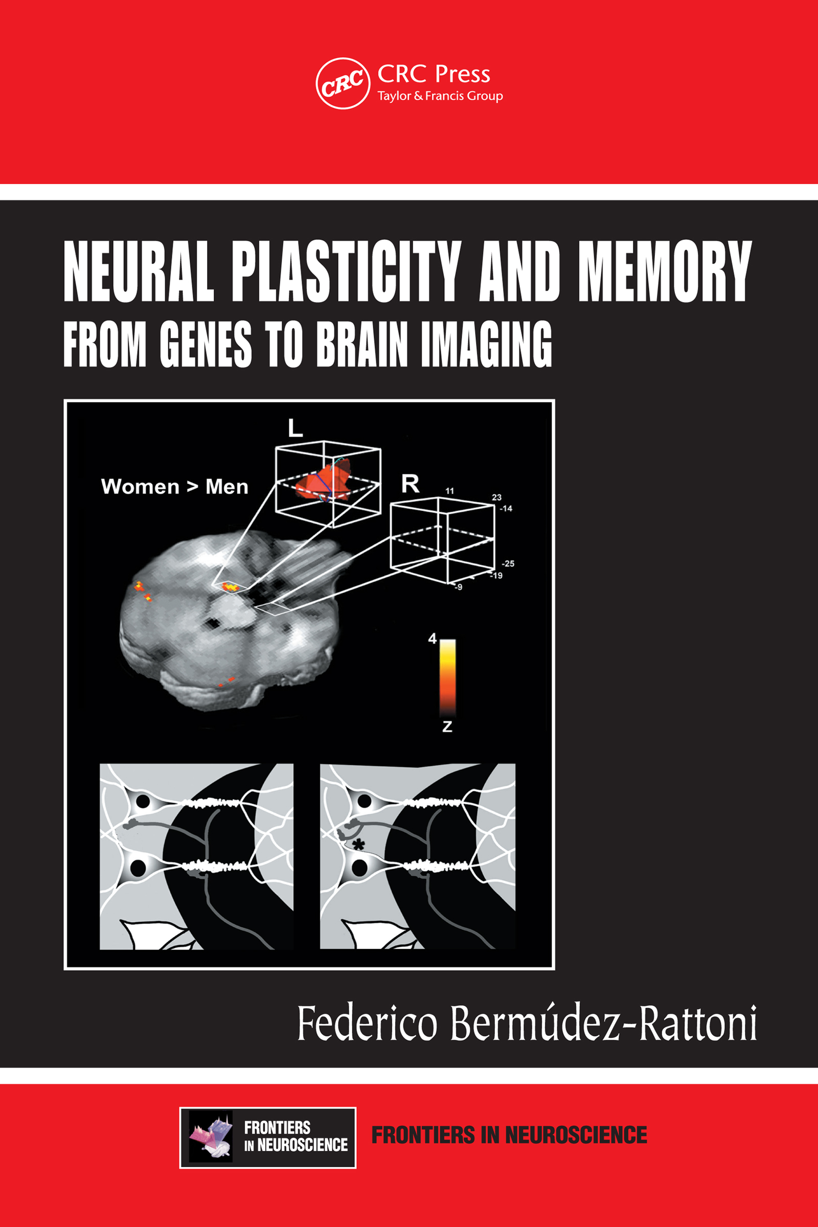 Neural Plasticity and Memory: From Genes to Brain Imaging, 1st Edition (e-Book) book cover