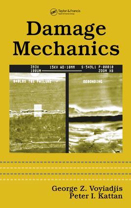 Damage Mechanics book cover