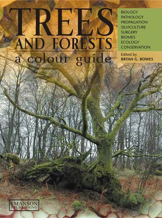 Temperate deciduous and temperate rain forests