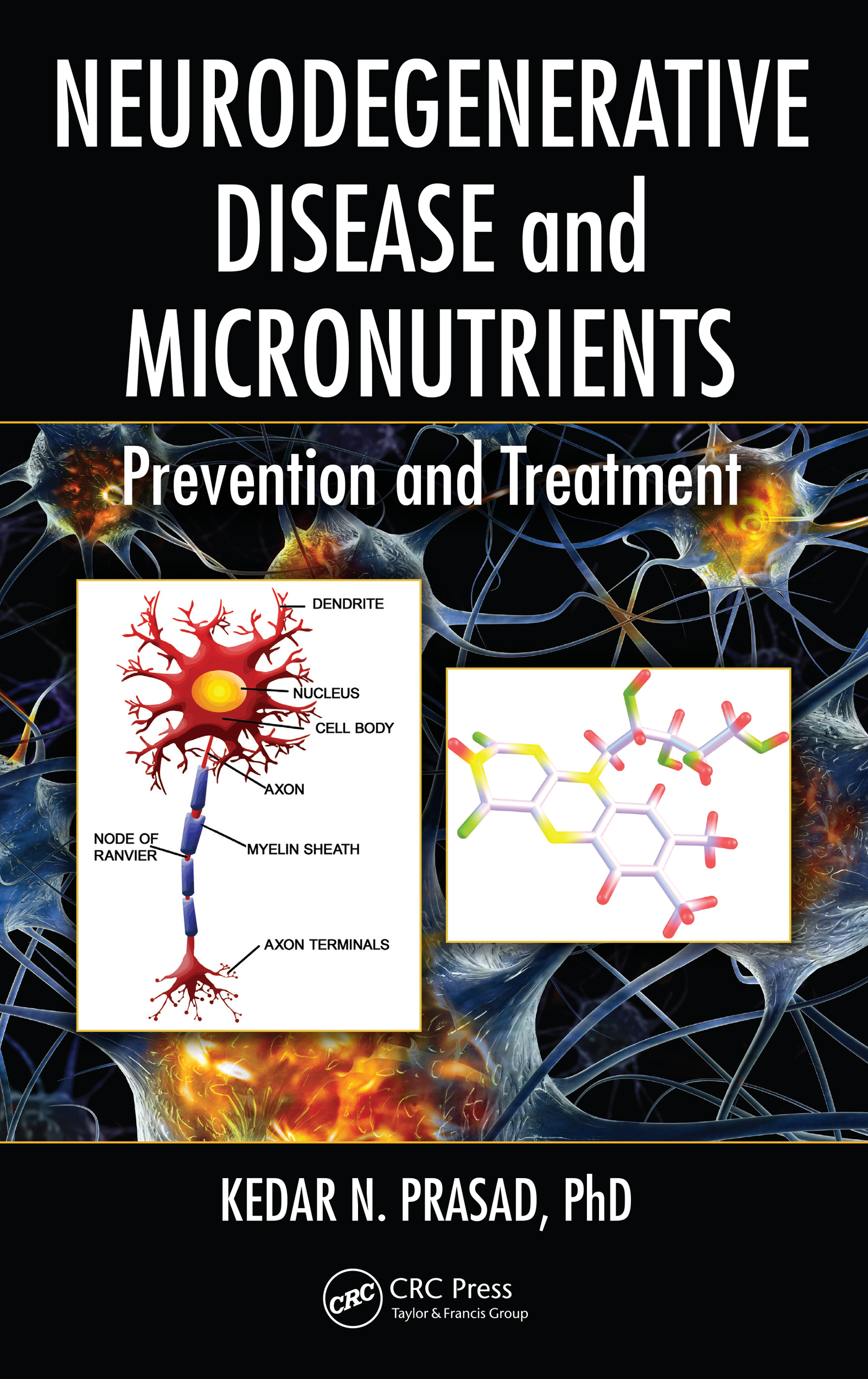 Neurodegenerative Disease and Micronutrients: Prevention and Treatment, 1st Edition (e-Book) book cover