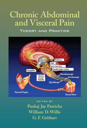 Chronic Abdominal and Visceral Pain: Theory and Practice, 1st Edition (e-Book) book cover