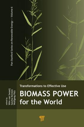 The Future Role Of Bioenergy In The Global Energy System