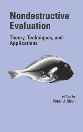 Nondestructive Evaluation: Theory, Techniques, and Applications, 1st Edition (e-Book) book cover