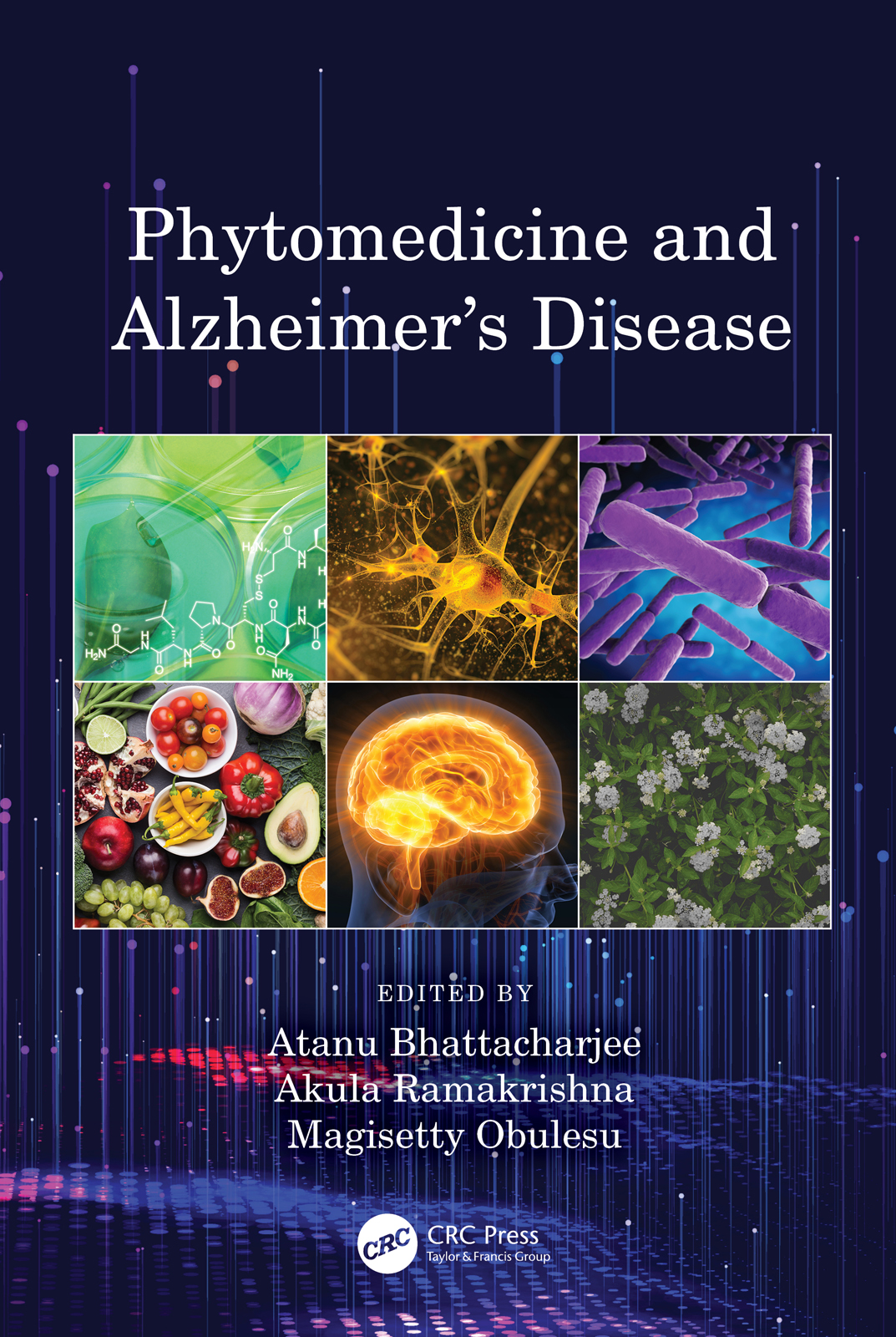 Phytomedicine and Alzheimer's Disease