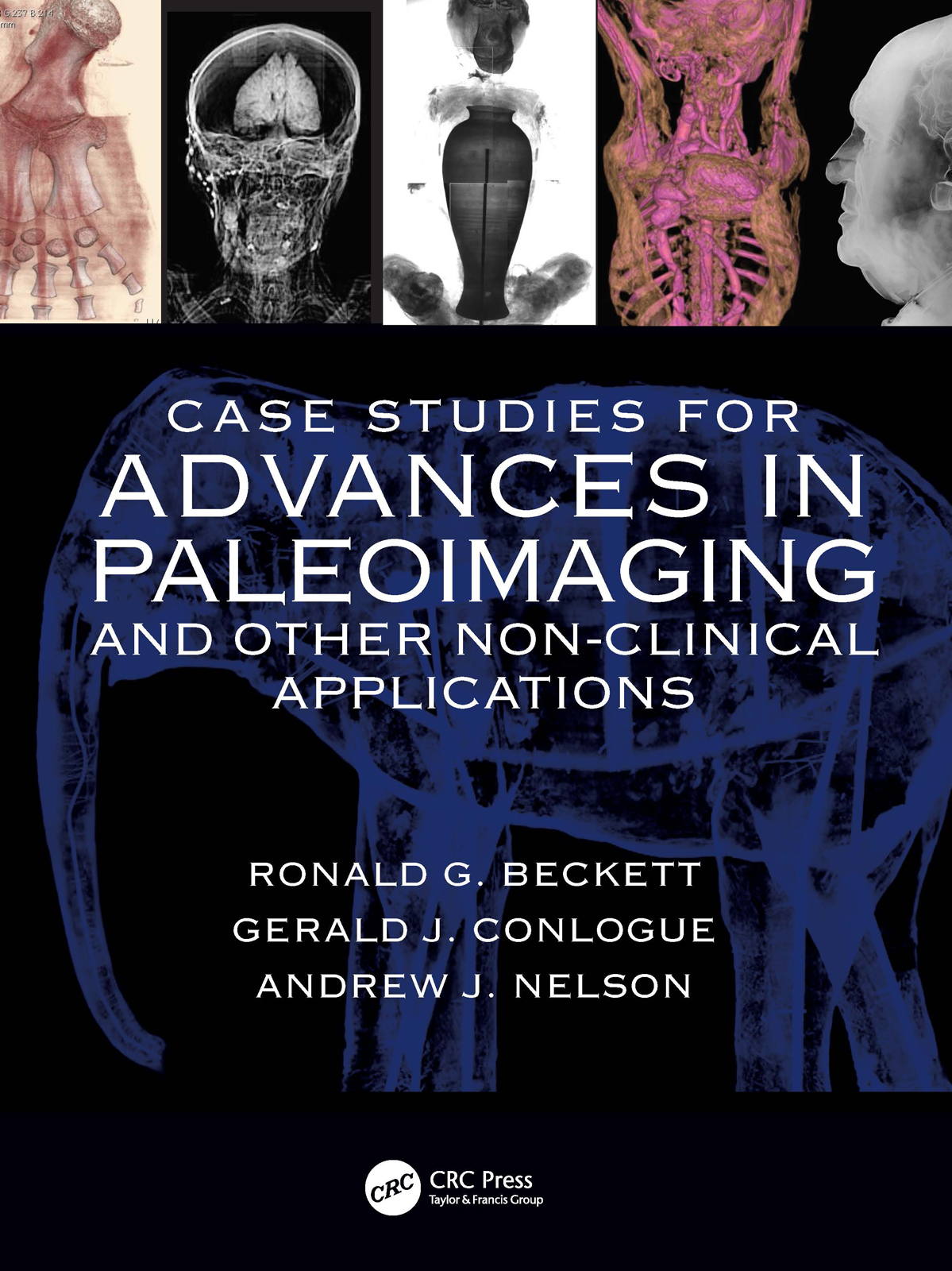 Case Studies for Advances in Paleoimaging and Other Non-Clinical Applications
