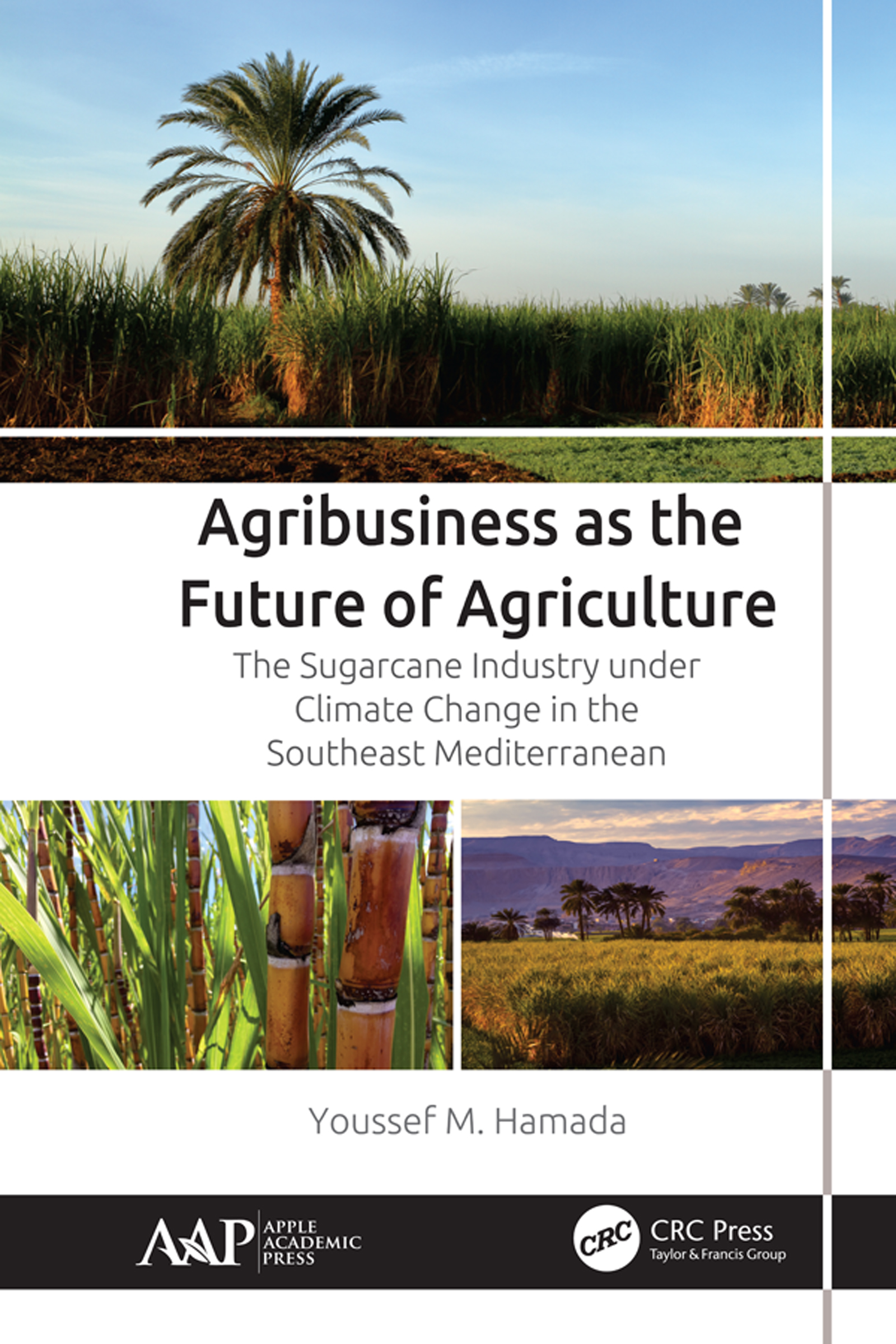 Agribusiness as the Future of Agriculture