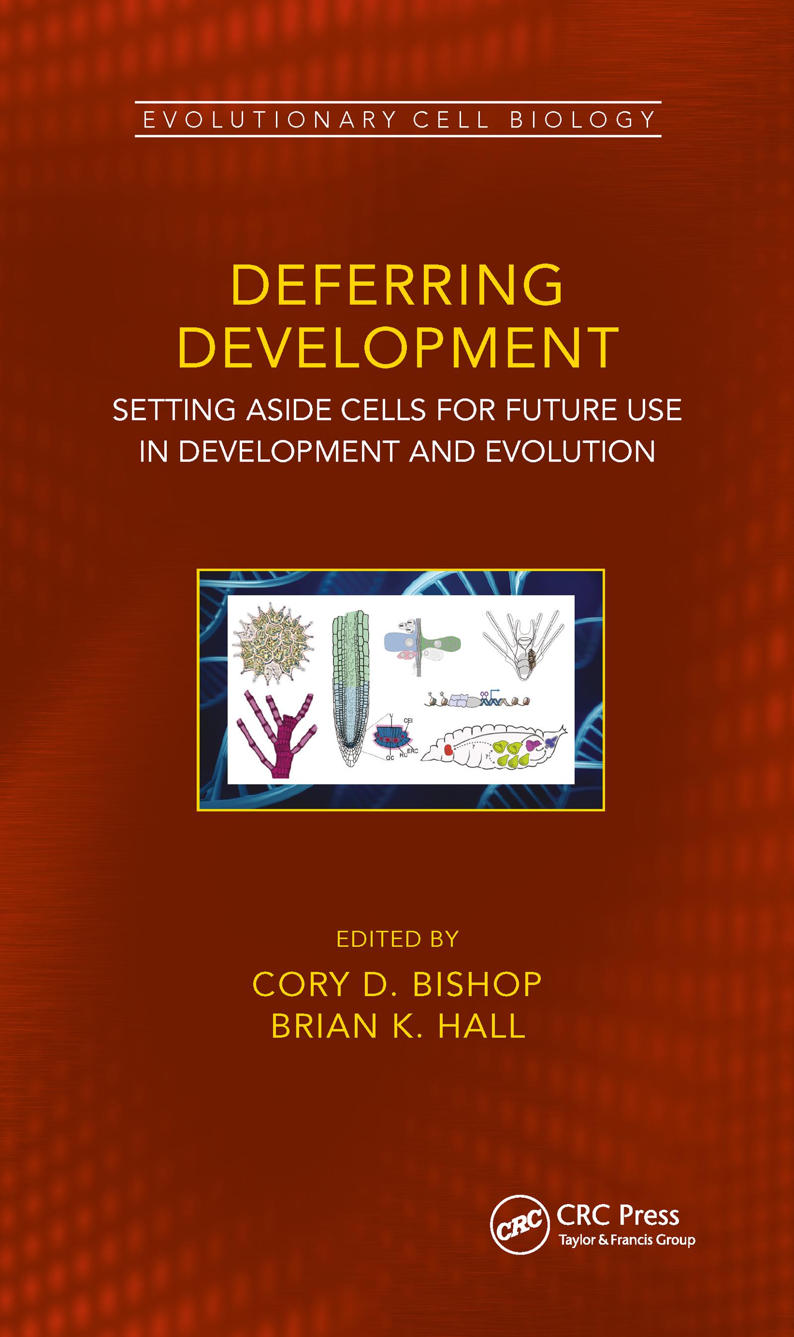 Deferred Development