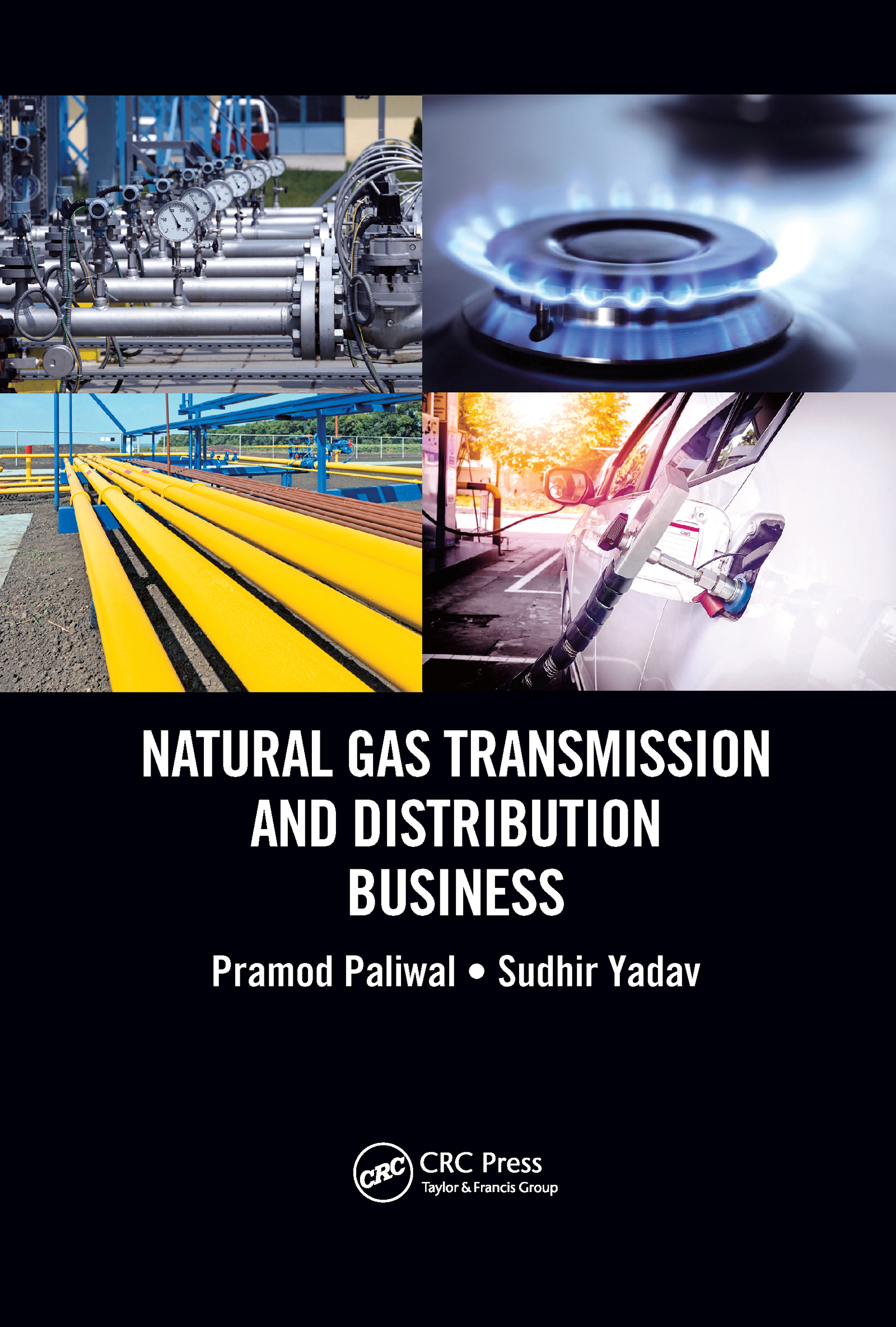 Natural Gas Transmission and Distribution Business
