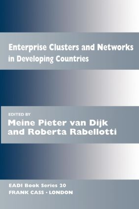 Enterprise Clusters and Networks in Developing Countries book cover