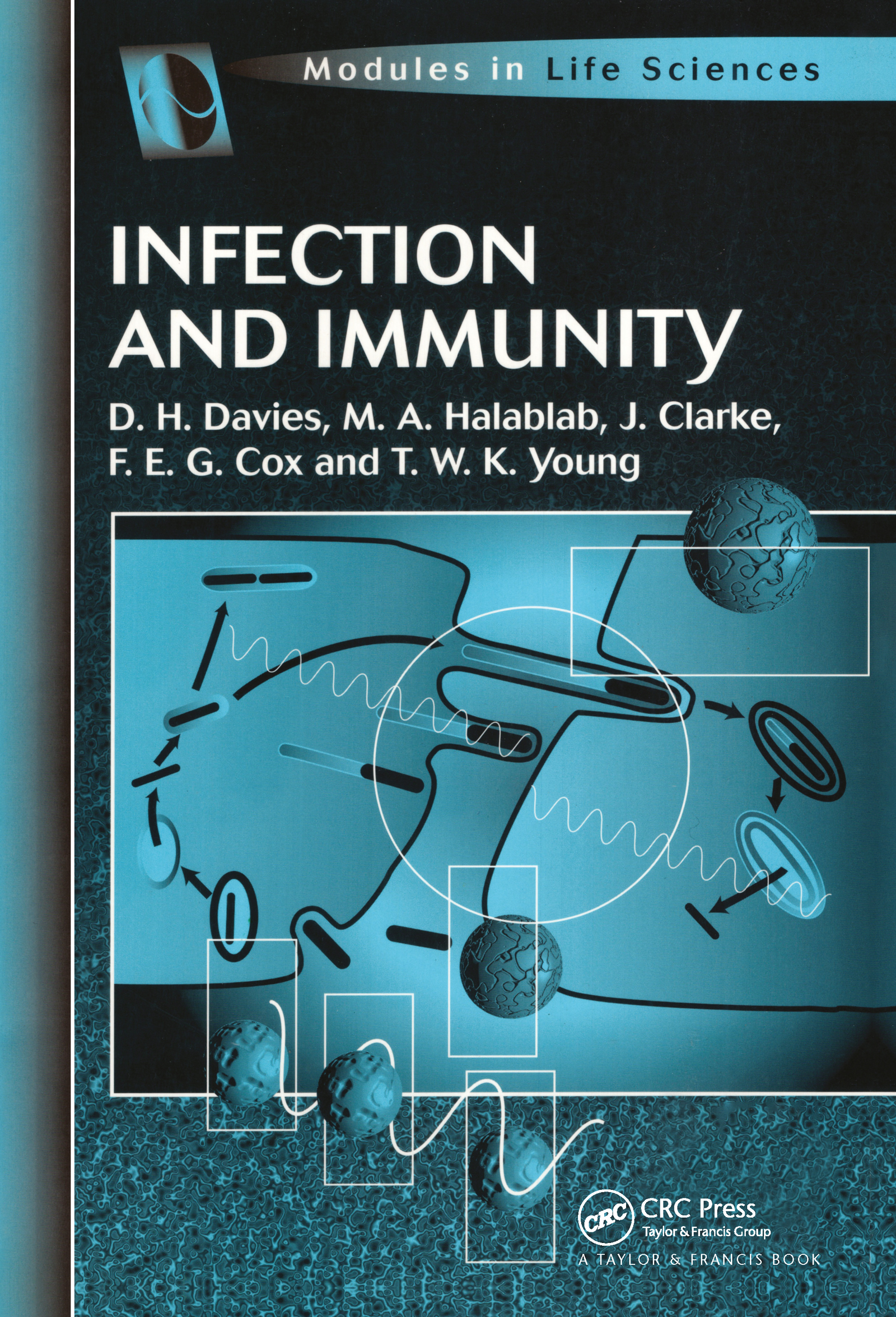 Infection and Immunity: 1st Edition (Paperback) book cover
