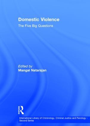 Domestic Violence: The Five Big Questions book cover