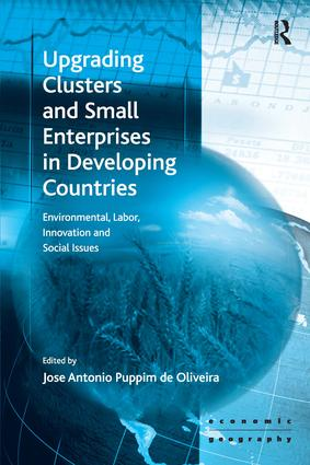 Upgrading Clusters and Small Enterprises in Developing Countries: Environmental, Labor, Innovation and Social Issues, 1st Edition (Hardback) book cover