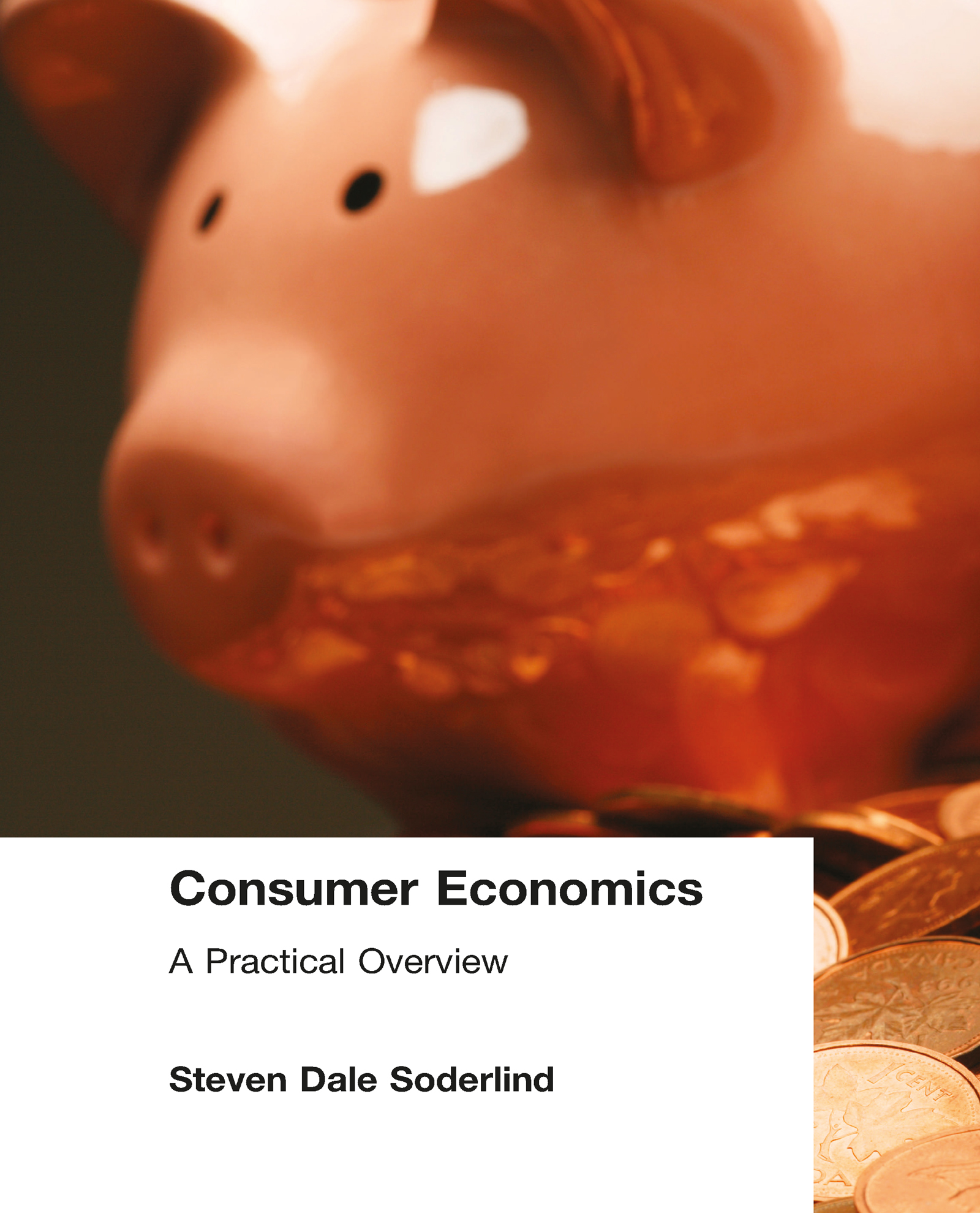 Consumer Economics: A Practical Overview: A Practical Overview, 1st Edition (Paperback) book cover