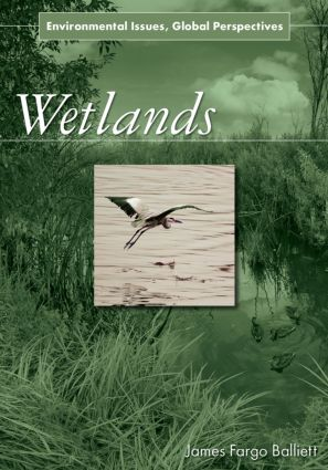 Wetlands: Environmental Issues, Global Perspectives, 1st Edition (Hardback) book cover