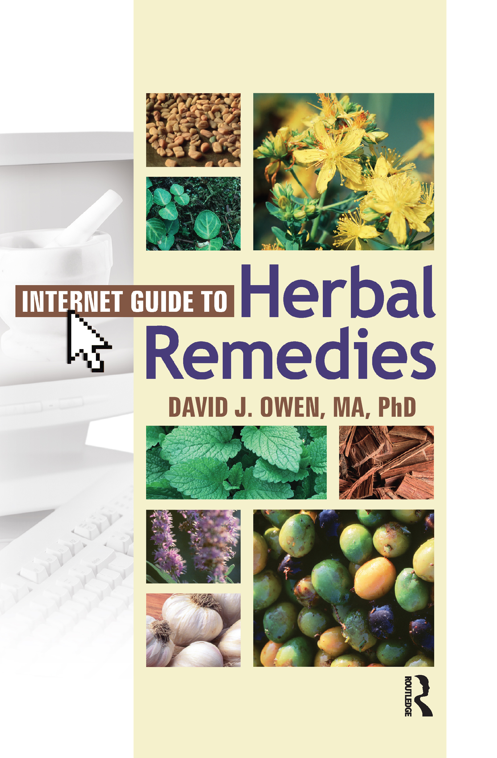 Internet Guide to Herbal Remedies (Paperback) book cover