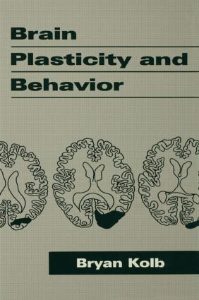 Brain Plasticity and Behavior (Hardback) book cover