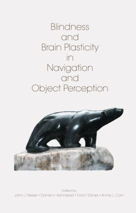 Blindness and Brain Plasticity in Navigation and Object Perception (Hardback) book cover