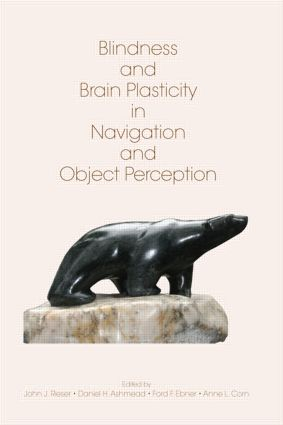 Blindness and Brain Plasticity in Navigation and Object Perception: 1st Edition (e-Book) book cover