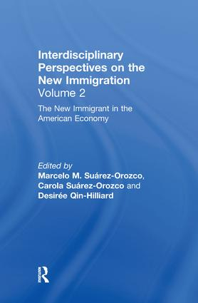 The New Immigrant in the American Economy: Interdisciplinary Perspectives on the New Immigration, 1st Edition (Hardback) book cover