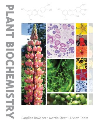 Plant Biochemistry: 1st Edition (Paperback) book cover