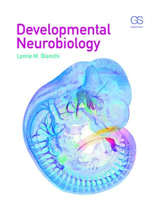 Developmental Neurobiology: 1st Edition (Paperback) book cover