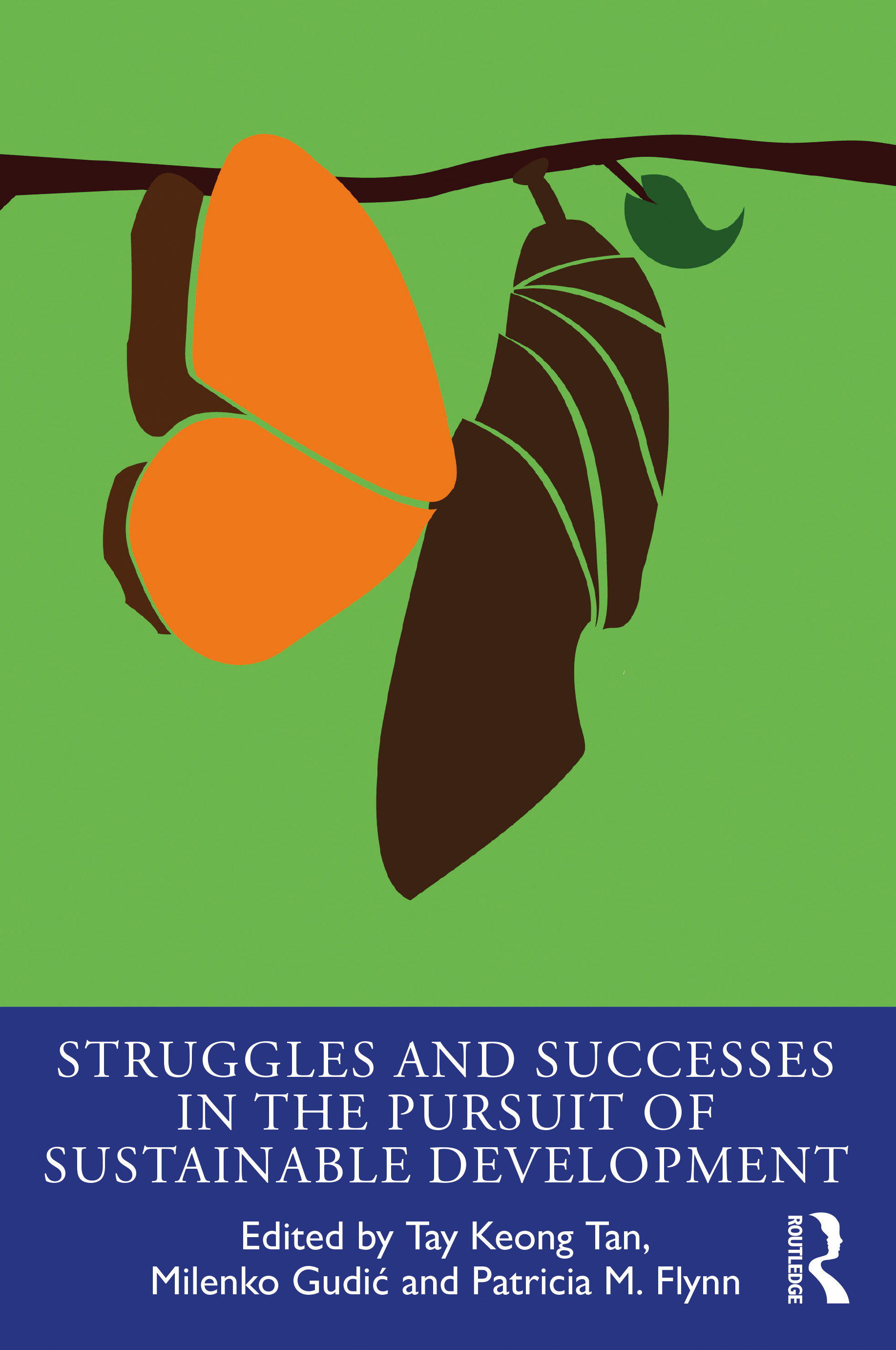 Struggles and Successes in the Pursuit of Sustainable Development: 1st Edition (Paperback) book cover