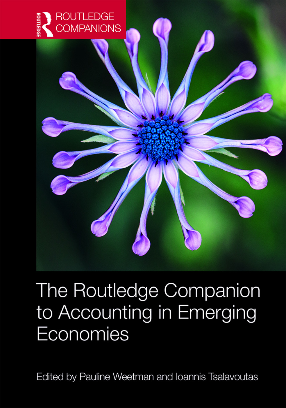 The Routledge Companion to Accounting in Emerging Economies: 1st Edition (Hardback) book cover