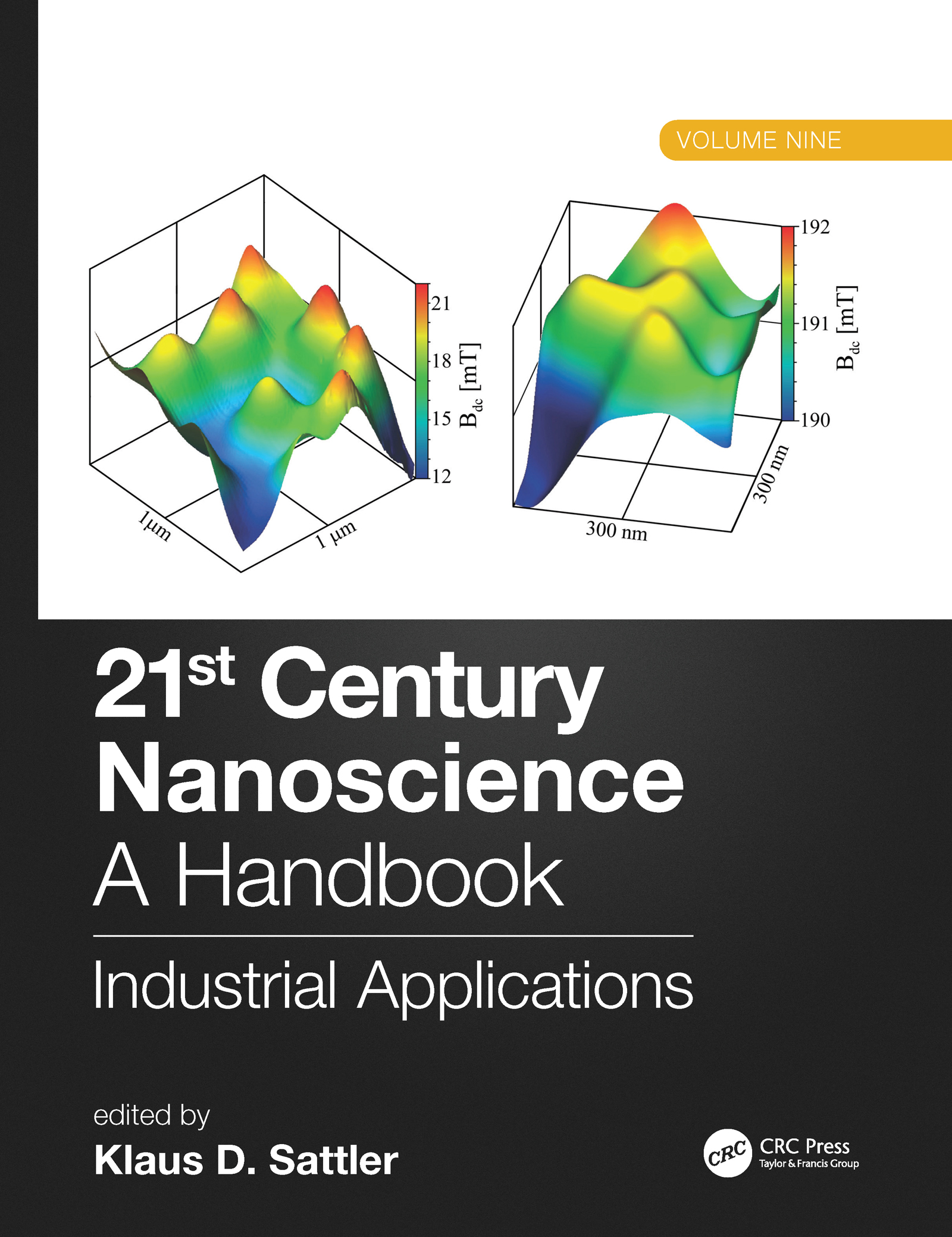 21st Century Nanoscience – A Handbook: Industrial Applications (Volume Nine) book cover