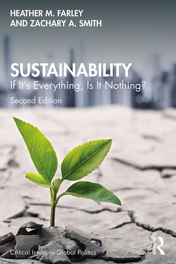 Sustainability: If It's Everything, Is It Nothing? book cover