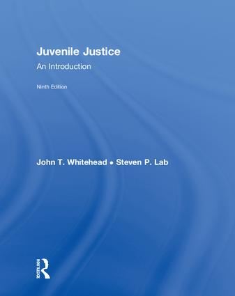 Juvenile Justice: An Introduction book cover