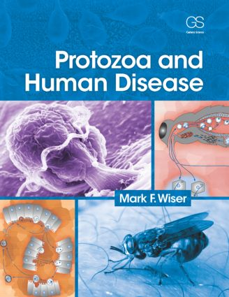 Protozoa and Human Disease: 1st Edition (Paperback) book cover