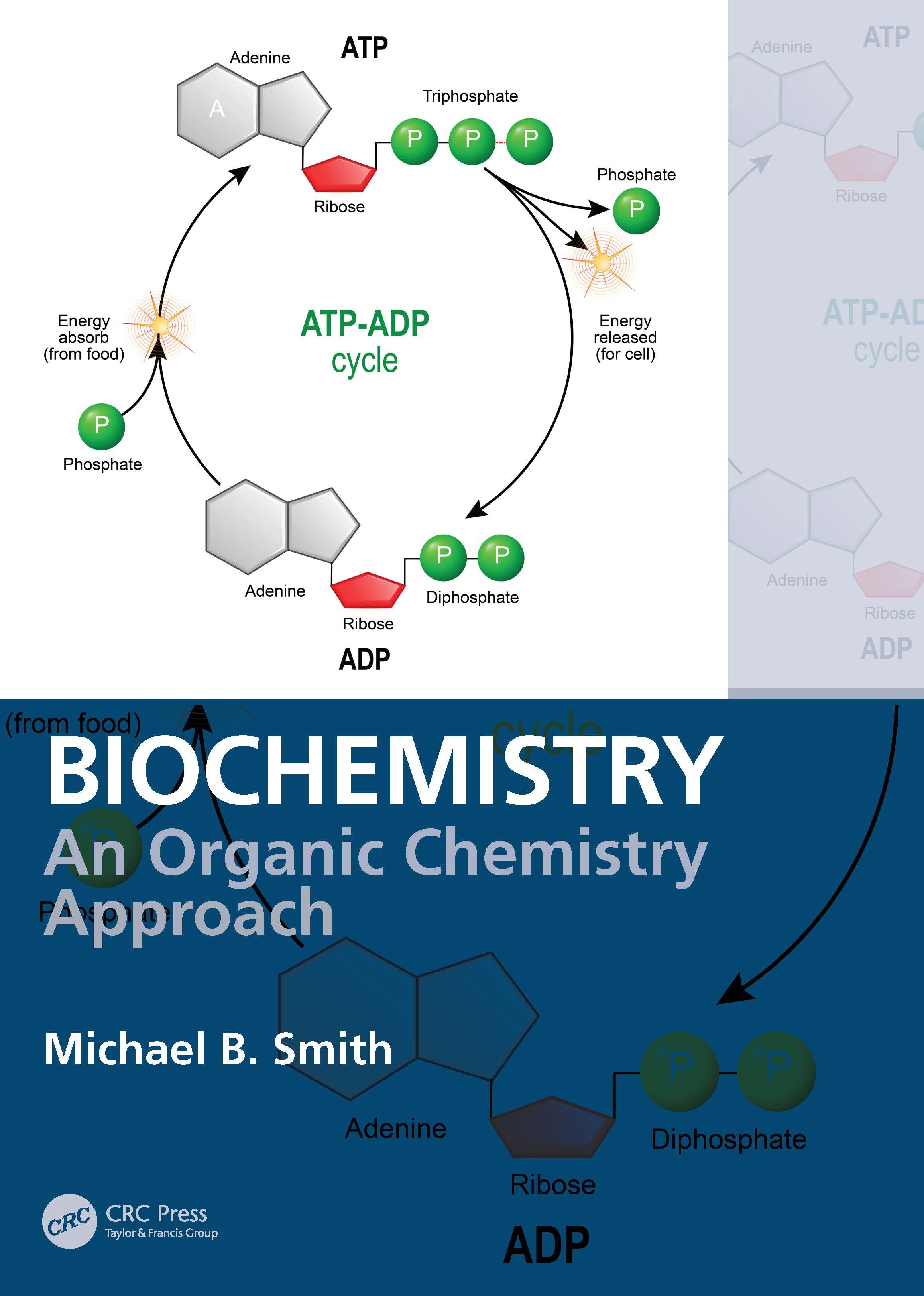 Biochemistry: An Organic Chemistry Approach book cover