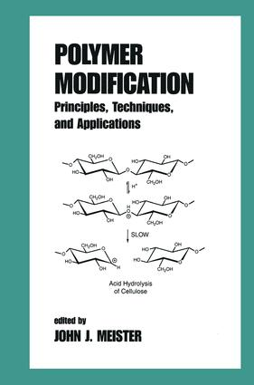 Polymer Modification: Principles, Techniques, and Applications, 1st Edition (Hardback) book cover