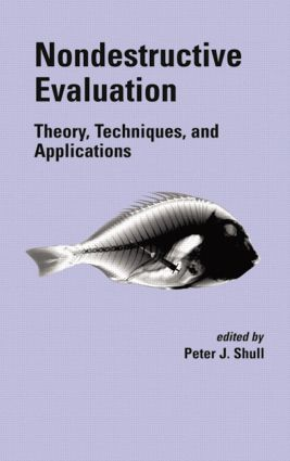 Nondestructive Evaluation: Theory, Techniques, and Applications, 1st Edition (Hardback) book cover