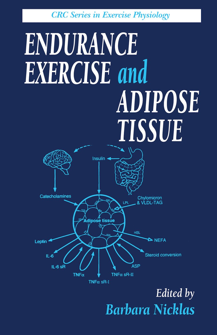 Endurance Exercise and Adipose Tissue: 1st Edition (Hardback) book cover
