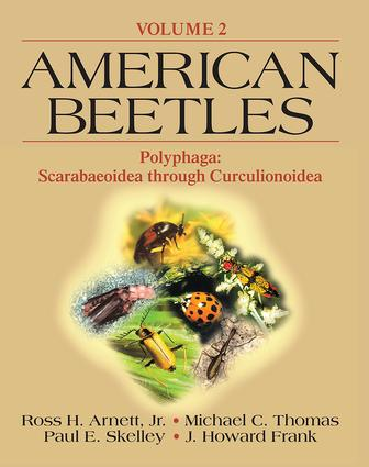 American Beetles, Volume II: Polyphaga: Scarabaeoidea through Curculionoidea (Paperback) book cover