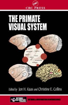 The Primate Visual System: 1st Edition (Hardback) book cover
