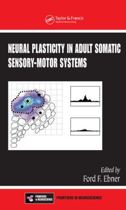 Neural Plasticity in Adult Somatic Sensory-Motor Systems (Hardback) book cover
