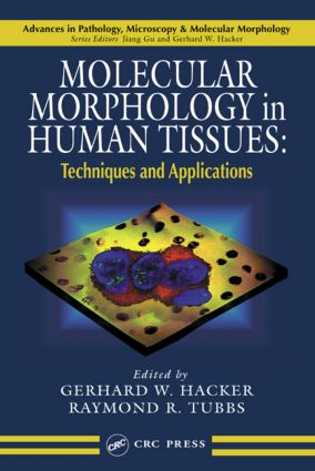 Molecular Morphology in Human Tissues: Techniques and Applications (Hardback) book cover