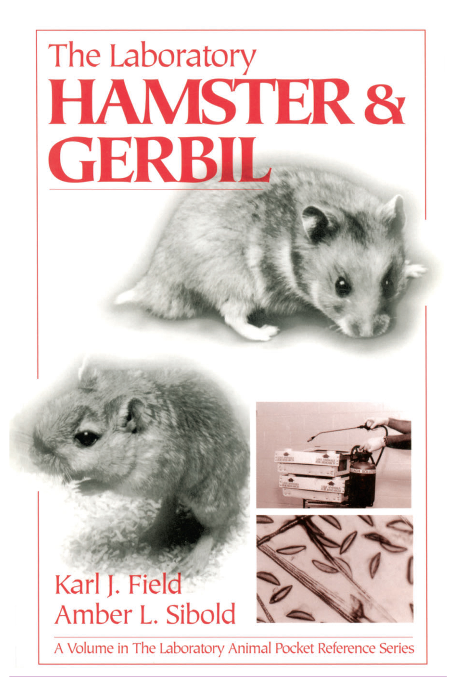 The Laboratory Hamster and Gerbil: 1st Edition (Paperback) book cover