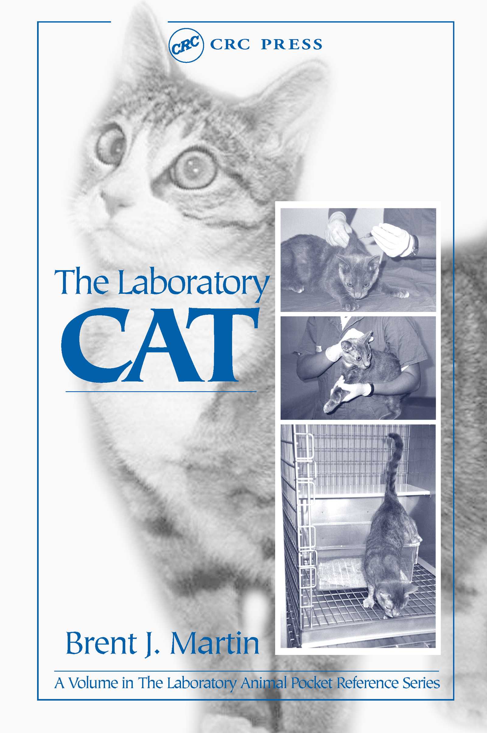 The Laboratory Cat book cover