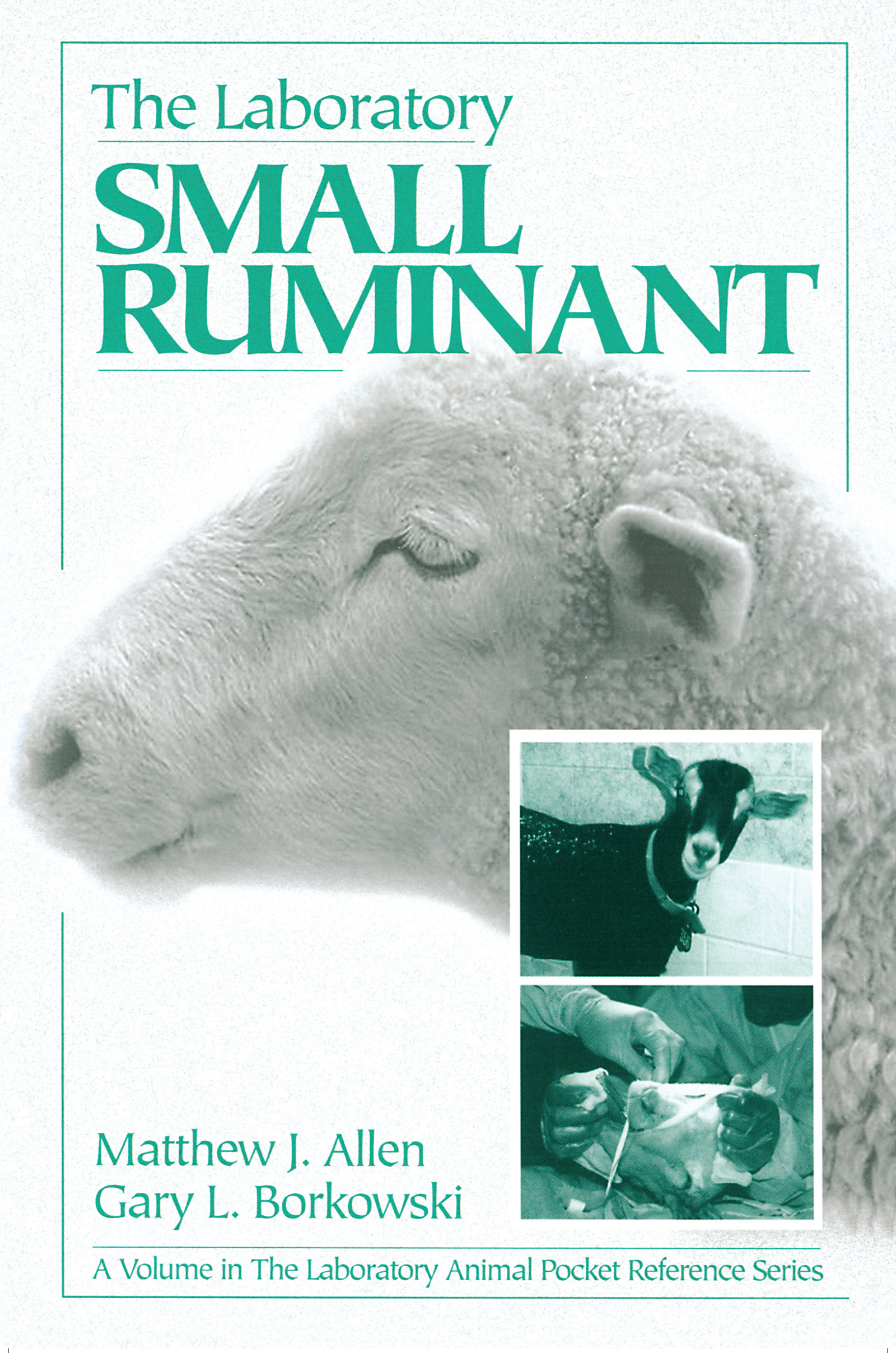 The Laboratory Small Ruminant: 1st Edition (Paperback) book cover