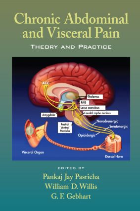 Chronic Abdominal and Visceral Pain: Theory and Practice, 1st Edition (Hardback) book cover