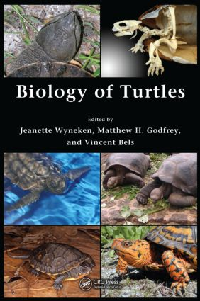 Biology of Turtles: From Structures to Strategies of Life, 1st Edition (Hardback) book cover